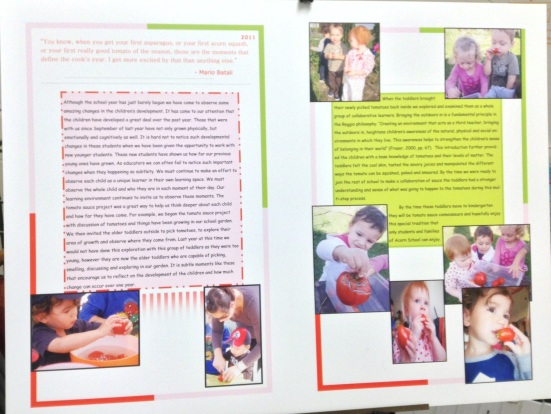 Acorn Tomato Documentation
