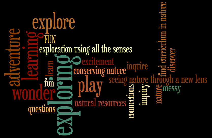 Parents Initial Thoughts On Forest School Technology Rich Inquiry