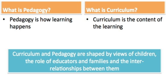 What is Pedagogy? What is Curriculum?