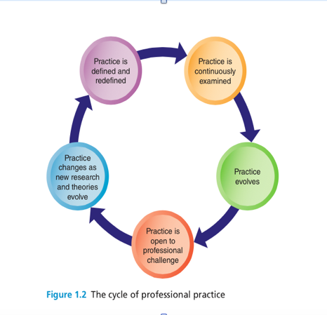 The Cycle of Professional Practice