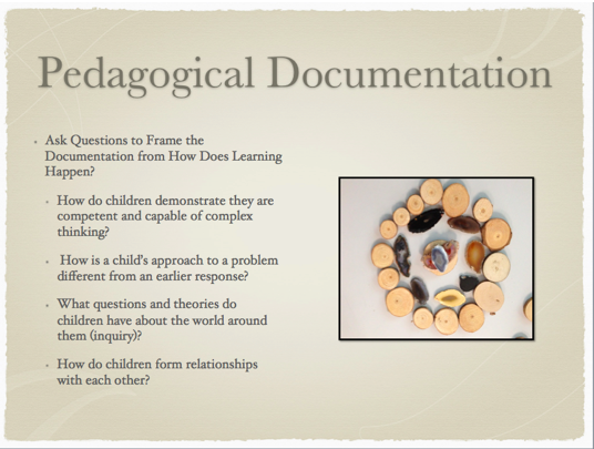 Pedagogical Documentation Why When Who What Where How