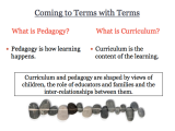 Titles and Topics: Emergent Curriculum Projects and Inquiries