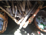 Multiplicity in Materials: Reggio Inspiration and the Knowledge of JeanPiaget