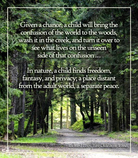 Richard Louv quote
