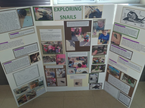 exploringsnails