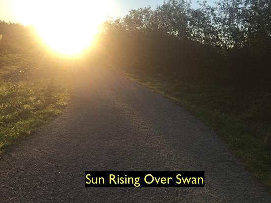 Sun rising over Swan