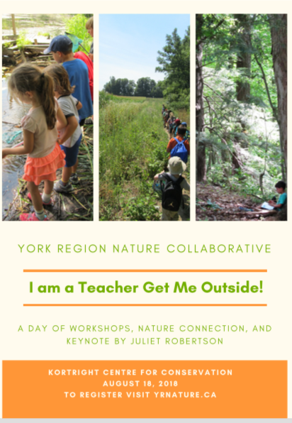 I am a Teacher Get ME OUTSIDE