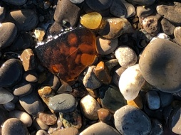 Shiny Beach Glass